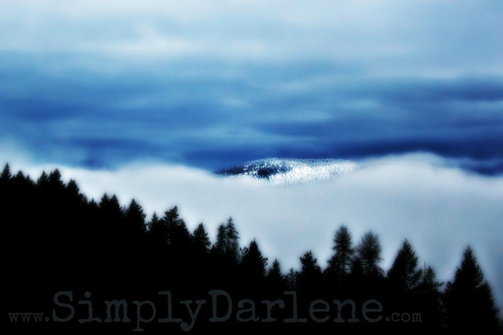 surreal fogSD